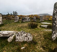 Darrintaggart West Stone Circle by donberry