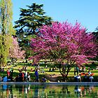 Villa Borghese by dreamax1985
