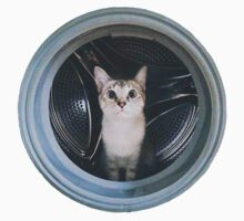 Cat Washing Machine by RomanaC