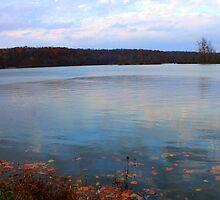 Colorful Reflection by Clayton Lyon