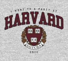 I went to a party at Harvard once by DCVisualArts
