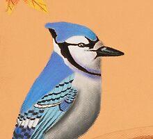 Blue Jay by jkartlife