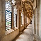 Cathedral Corridor I by Ray Warren