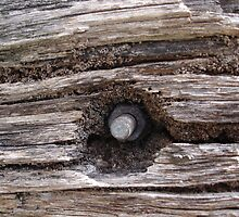 Hornsby Old Wooden beam by scholara
