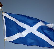 Scottish Saltire by Charles  Staig