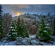 A Place In My Heart ~ Snow ~ Photographic Print