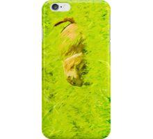 Prairie Dog Abstract Impressionism iPhone Case/Skin