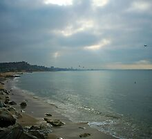 Light Shines on Santa Monica by apelike22
