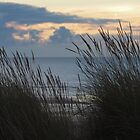 Early Morning in Winter at Camber Sands by seymourpics