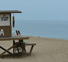 Lifeguard Shack by markc54