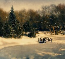 Winter Dream by Dorothy  Pinder