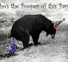 Pooper of the Party by Darren Quarin
