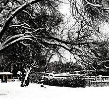 Santa Fe Snow Day by Rhonda Strickland