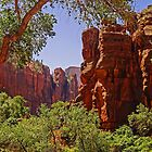 Zion National Park - Utah - USA by TonyCrehan