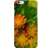 Orange Hawkweed Blossoms Abstract Impressionism iPhone Case/Skin