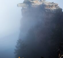Foggy Grand Canyon national Park -  arizona by Jerome Obille