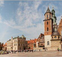 Wawel Castle by Andrea  Muzzini