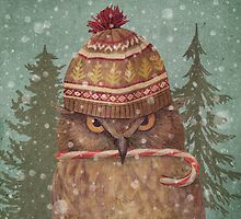 Holiday Owl  by Terry  Fan