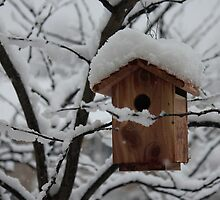 Snow Covered Birdhouse by Sheryl Hopkins