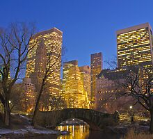 Central Park at Night by Ryan Mingin