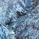 Lower Falls of the Yellowstone River in Snow by cavaroc