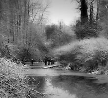 Winter Slough by Darren Quarin