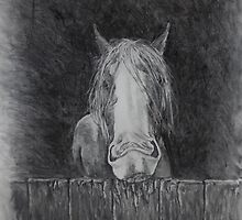 Toby the Bored Clydesdale by MelanieRose