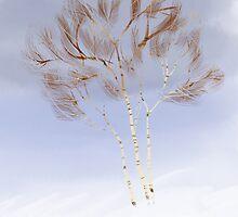Wintery trees by Petra van Berkum