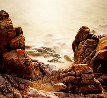 North West of Tasmania by Angelika  Vogel