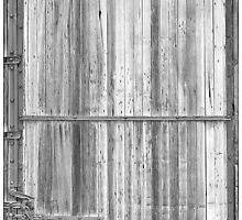 BW Old Classic Colorado Railroad Car Door  by Bo Insogna