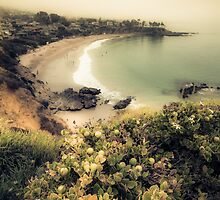 Fog landscape on Laguna Beach by Sviatlana Kandybovich