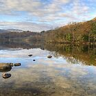 Rydal Water,The Lake District by Jamie  Green