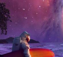 Space Walk Sticker