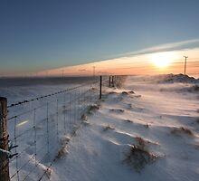 fenced sunrise by JorunnSjofn Gudlaugsdottir