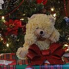 Bear on Gift by vigor