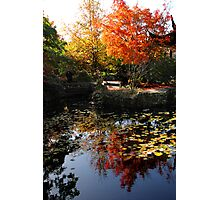 Chinese Garden in Autumn: Vancouver Photographic Print