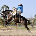 Rodeo. Broncs by Barbara  Jean