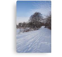 A Pale Blue Snowday  Canvas Print