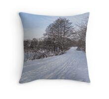 A Pale Blue Snowday  Throw Pillow
