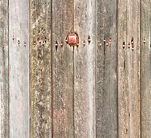 Railroad Wood Texture and Red Bolts by Bo Insogna