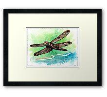 Dragonfly Notes Framed Print