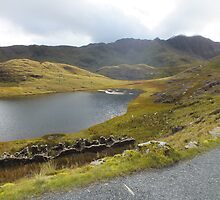 Snowdon pathway by Johindes
