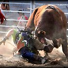 Rodeo, Roughed Up. by Barbara  Jean