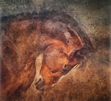 Horse portrait  by Julia Shepeleva