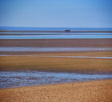 Low Tide by jeremyab