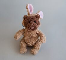 Teddy Bear with a Bunny Hood by donberry