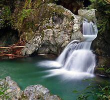Twin Falls at Lynn Canyon Park by Michael Russell