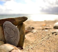 Stones on the beach by stevieuk