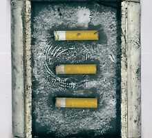 Assemblage #3 - Collected cigarettes by philopoodle