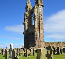 Ruined St Andrews Cathedral by Pete Johnston